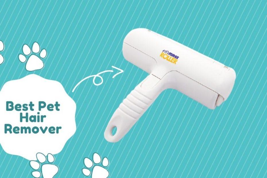 Best Pet Hair Remover